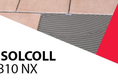 DICHIARAZIONE DI PREST- ISOLCOLL B10NX